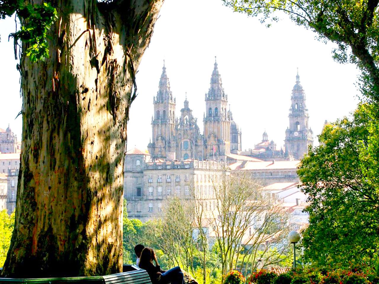 Study in Galicia