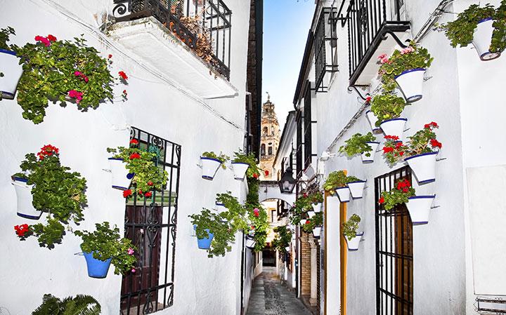 Learn spanish with short term program in Seville